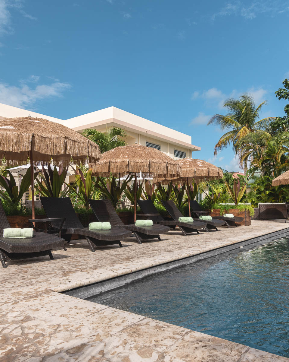 Malecon House Pool and Terrace